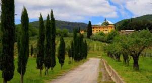 2016 Tuscan Trip Bro C